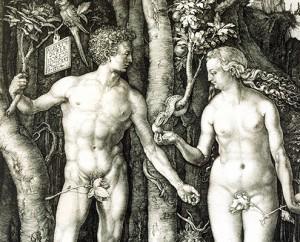Albrecht Dürer, Adam et Ève (La Chute) (détail), 1504. MBAM, achat, fonds Mlle Olive Hosmer