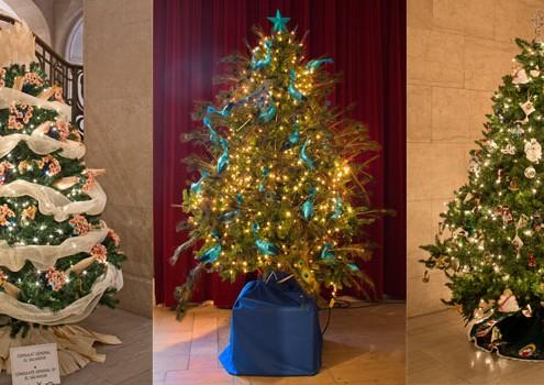 Christmas Tree Exhibition