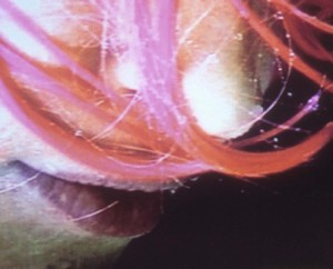 Pipilotti Rist, Rainwoman (I Am Called A Plant) (detail), 1999. MMFA, purchase, William Gilman Cheney Bequest and gift of Ann and Barrie Birks